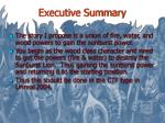 executive summary1
