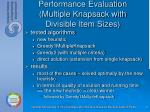 performance evaluation multiple knapsack with divisible item sizes
