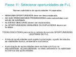 passo 11 selecionar oportunidades de p l
