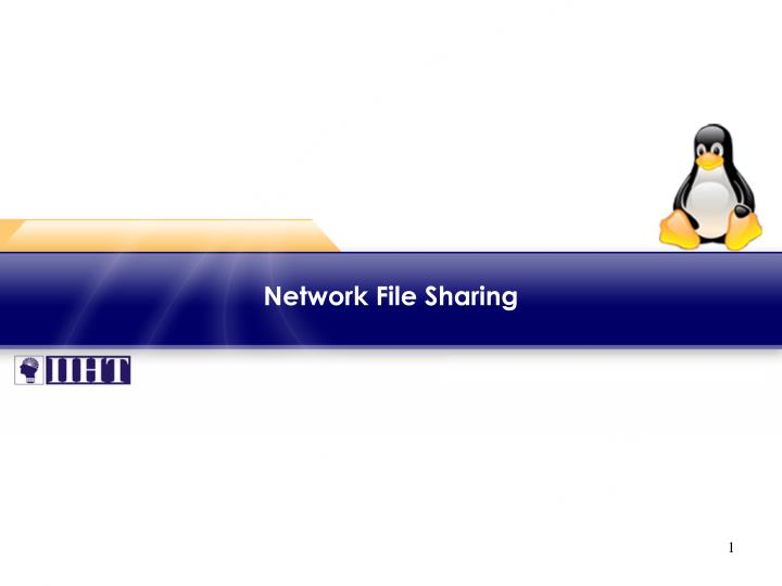 network file sharing n.
