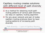 capillary routing creates solutions with different level of path diversity