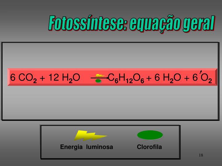 Fotossíntese: equação geral