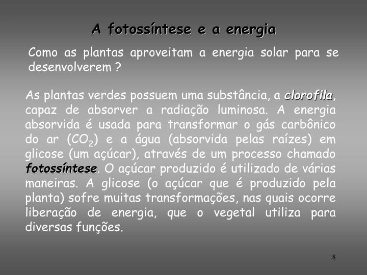A fotossíntese e a energia