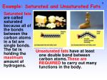example saturated and unsaturated fats