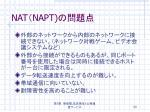 nat napt1