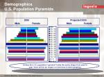 demographics u s population pyramids