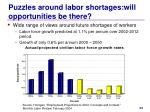 puzzles around labor shortages will opportunities be there