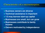 characteristics of a microenterprise