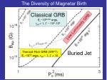 the diversity of magnetar birth