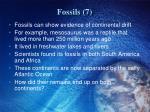 fossils 7