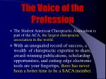 the voice of the profession