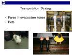 transportation strategy1