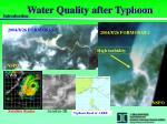 water quality after typhoon