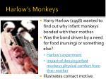 harlow s monkeys