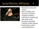 social motives affiliation