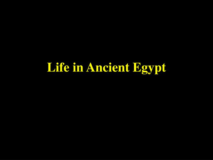 life in ancient egypt n.