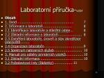 laboratorn p ru ka vzor