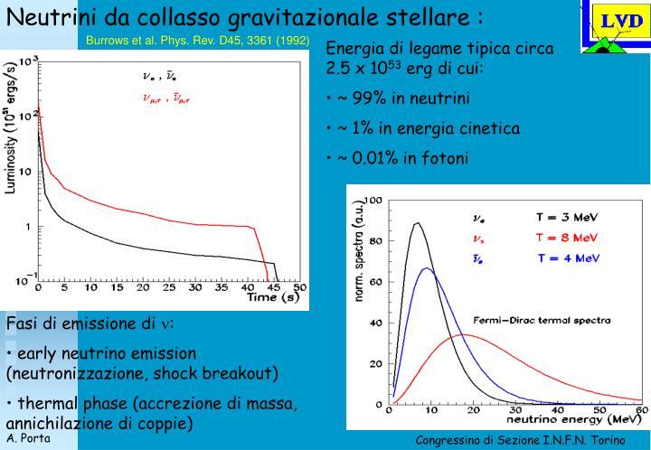 Neutrini da collasso gravitazionale stellare :