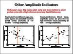 other amplitude indicators