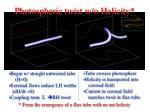 photospheric twist w o helicity