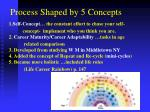 process shaped by 5 concepts