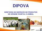 dipova diretoria de inspe o de produtos de origem vegetal e animal