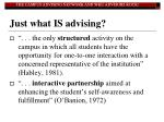 just what is advising