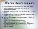 regional utvikling og n ring