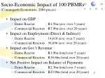 socio economic impact of 100 pbmrs conningarth economists 2004 prices