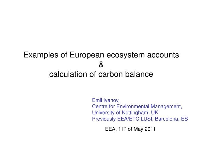 examples of european ecosystem accounts calculation of carbon balance n.