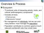 overview process
