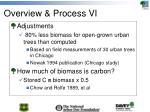 overview process vi1