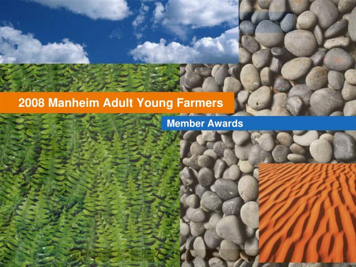 2008 manheim adult young farmers