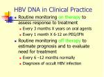hbv dna in clinical practice