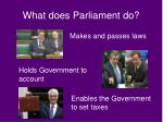 what does parliament do
