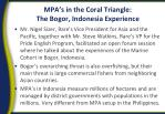 mpa s in the coral triangle the bogor indonesia experience