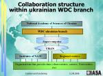 collaboration structure within ukrainian wdc branch