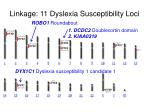 linkage 11 dyslexia susceptibility loci