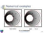 numerical examples1
