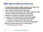 amd opteron memory hierarchy