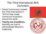 the third international aka comintern
