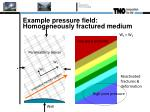 example pressure field homogeneously fractured medium