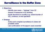 surveillance in the buffer zone