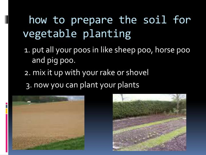 how to prepare the soil for vegetable planting n.