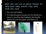 what you can use as glass houses to help your baby plants stay safe from the cold