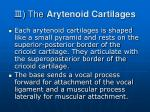 the arytenoid cartilages