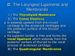 the laryngeal ligaments and membranes