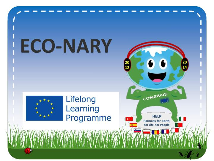eco nary n.