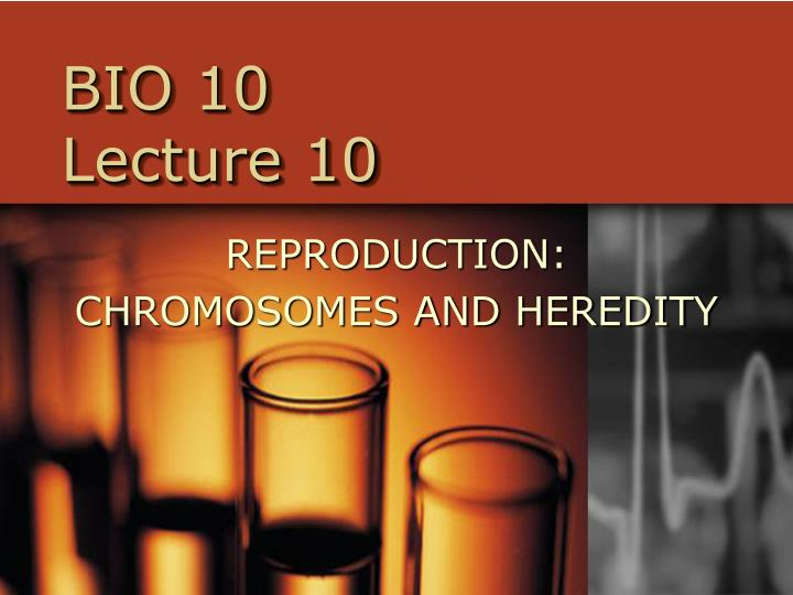 bio 10 lecture 10 n.