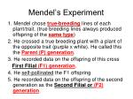 mendel s experiment